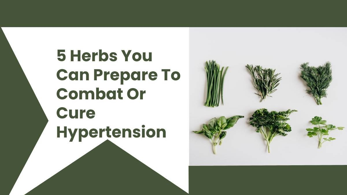 5 Herbs You Can Prepare To Combat Or Cure Hypertension