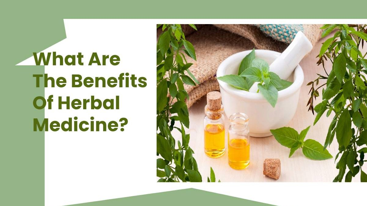 What Are The Benefits Of Herbal Medicine?