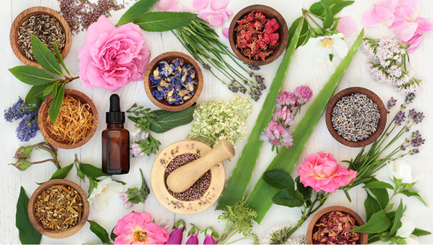 Amanda Jo of Organic Bunny Shares X Reasons Why Green Beauty Products Are On The Rise?