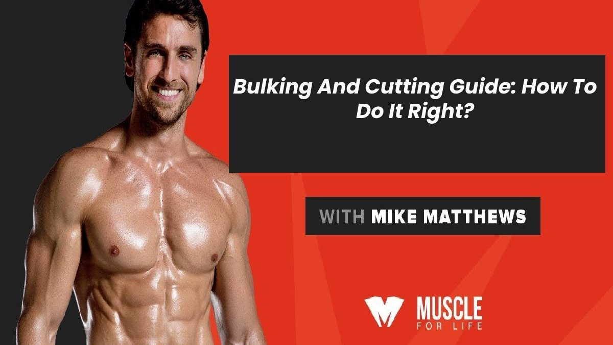 Bulking And Cutting Guide: How To Do It Right?