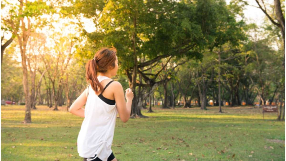 7 Things That Promote Healthy Practices In The Public